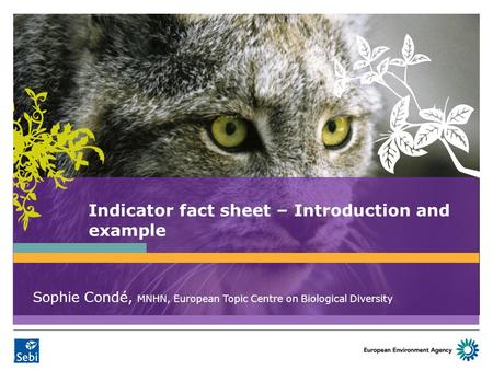 Indicator fact sheet – Introduction and example Sophie Condé, MNHN, European Topic Centre on Biological Diversity.