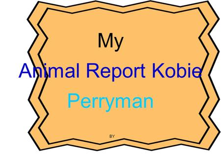 My Animal Report Kobie Perryman