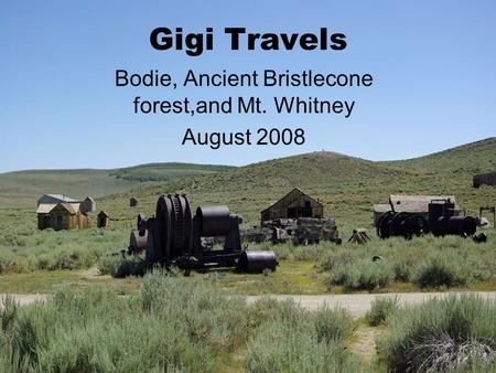 Gigi Travels Bodie, Ancient Bristlecone forest,and Mt. Whitney August 2008.