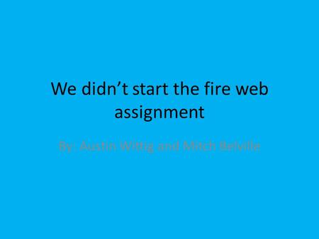 We didn't start the fire web assignment By: Austin Wittig and Mitch Belville.