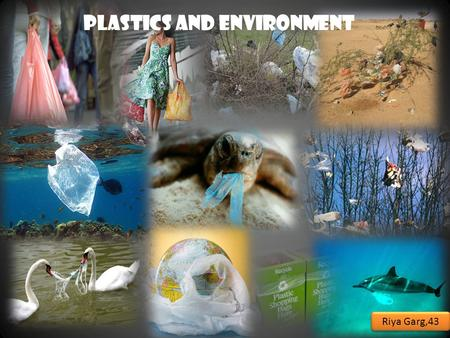 PLASTICS <strong>AND</strong> ENVIRONMENT Riya Garg,43. Introduction:- When we go to the market, we usually get things wrapped in plastic or packet in polythene bags.