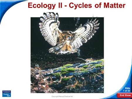 Ecology II - Cycles of Matter