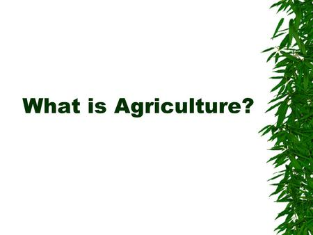 What is Agriculture?.  What are you wearing?  What did you eat for breakfast?