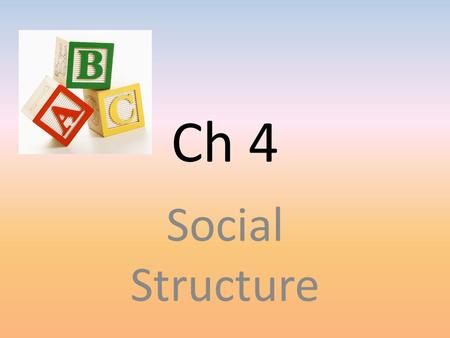 Ch 4 Social Structure.
