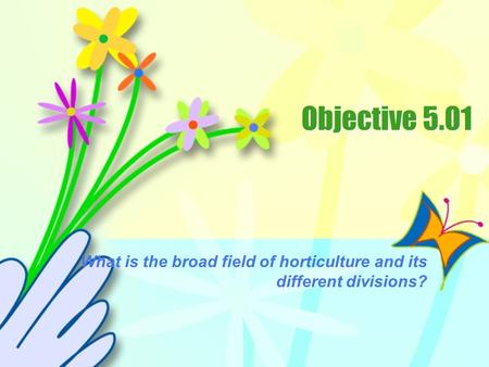 What is the broad field of horticulture and its different divisions?