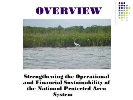 OVERVIEW Strengthening the Operational and Financial Sustainability of the National Protected Area System.