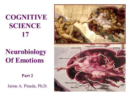 COGNITIVE SCIENCE 17 Neurobiology Of Emotions Part 2 Jaime A. Pineda, Ph.D.