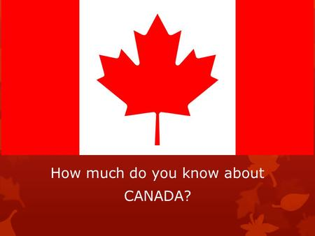 How much do you know about CANADA?. Who is the Prime Minister of Canada? 1)Justin Trudeau 2)David Johnston 3)Queen Elizabeth 4)Steven Harper.