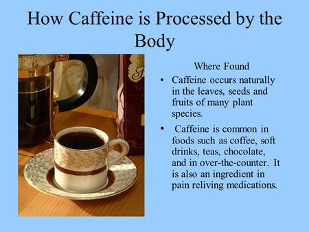How Caffeine is Processed by the Body Where Found Caffeine occurs naturally in the leaves, seeds and fruits of many plant species. Caffeine is common in.