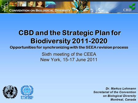 CBD and the Strategic Plan for Biodiversity 2011-2020 Opportunities for synchronizing with the SEEA revision process Sixth meeting of the CEEA New York,