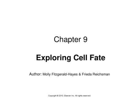 Chapter 9 Exploring Cell Fate