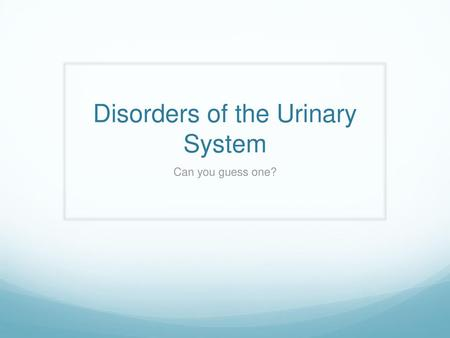 Chapter 32 Caring for the Child with a Renal, Urinary Tract
