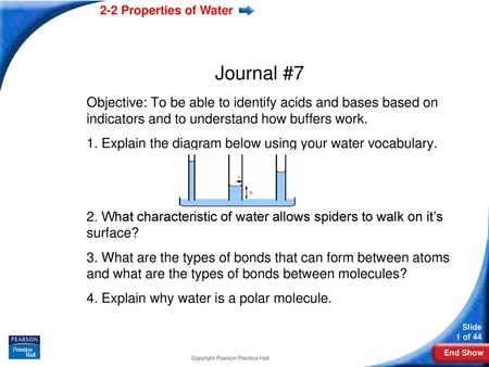 Lesson Overview 2 2 Properties Of Water Ppt Download