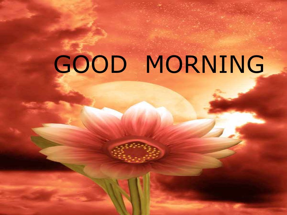 Good Morning Today S Lesson Create Emotion Ppt Download