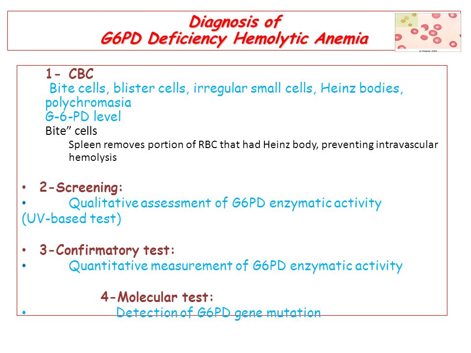 Glucose-6-phosphate Dehydration Deficiency - ppt video online download