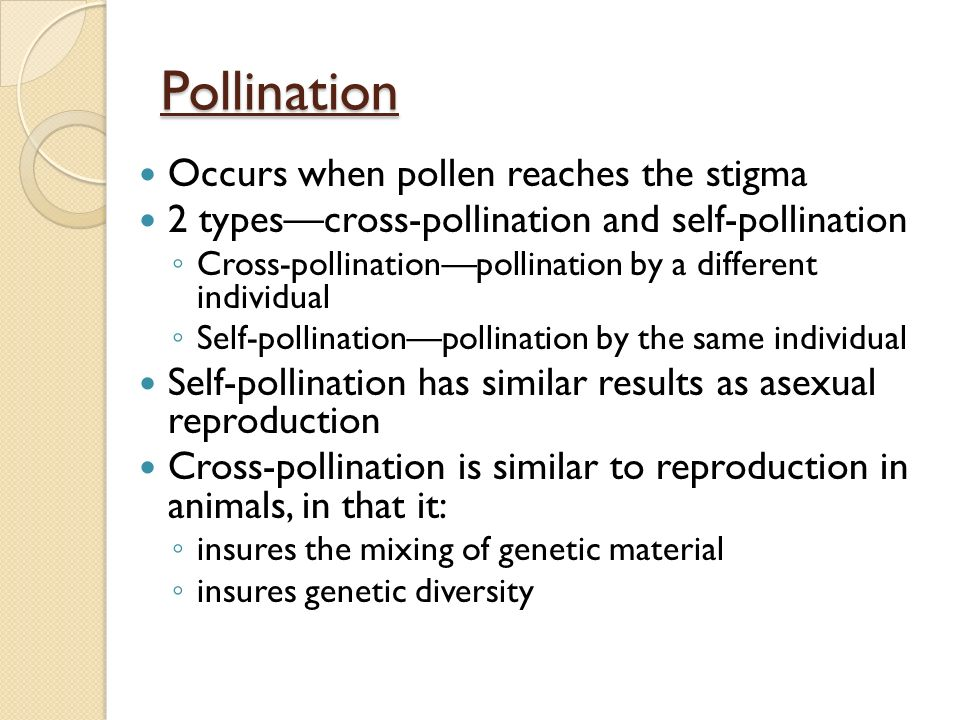 Difference between self pollination and asexual reproduction