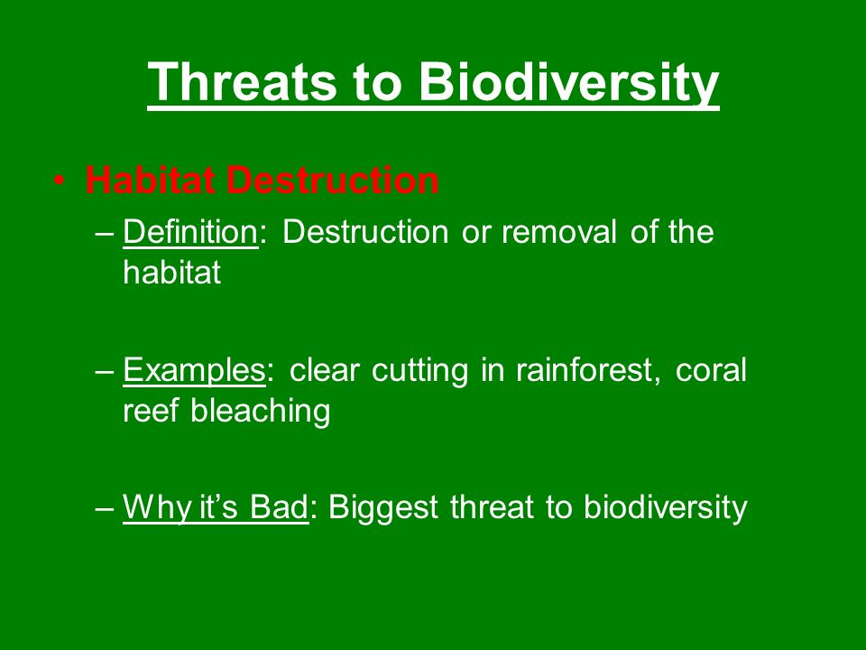 Biodiversity The Variety Of Life In An Area Ppt Video Online Download