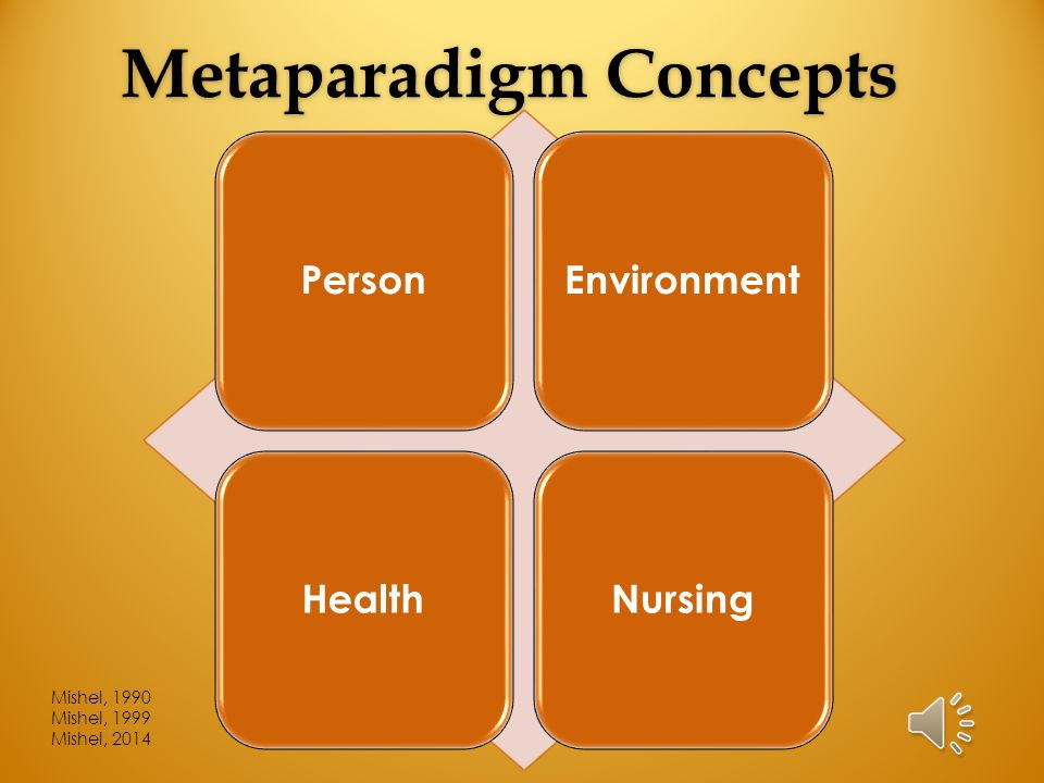 nursing metaparadigm environment