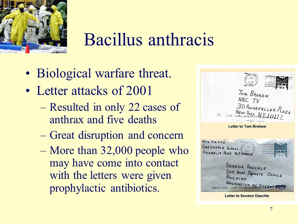 the threat of biological warefare essay It calls them asymmetric threats, meaning threats that attack us where we are least prepared it is nearly impossible to mount a focused, effective response because the threats and their perpetrators are too diverse if you can imagine something bad, it's probably going to happen we just don't know.