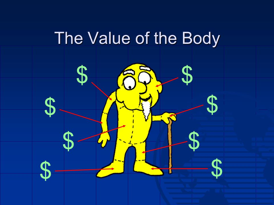 The Value of the Body $ $ $ $ $ $ $ $