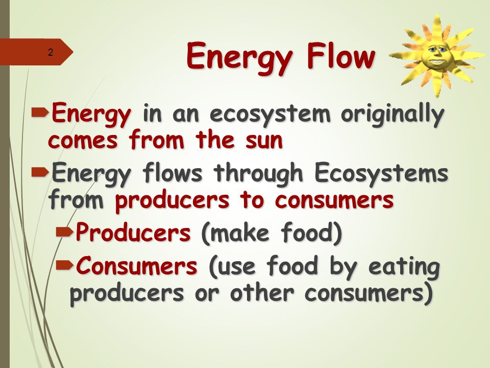 2. 1 – energy flow in ecosystems ppt video online download.