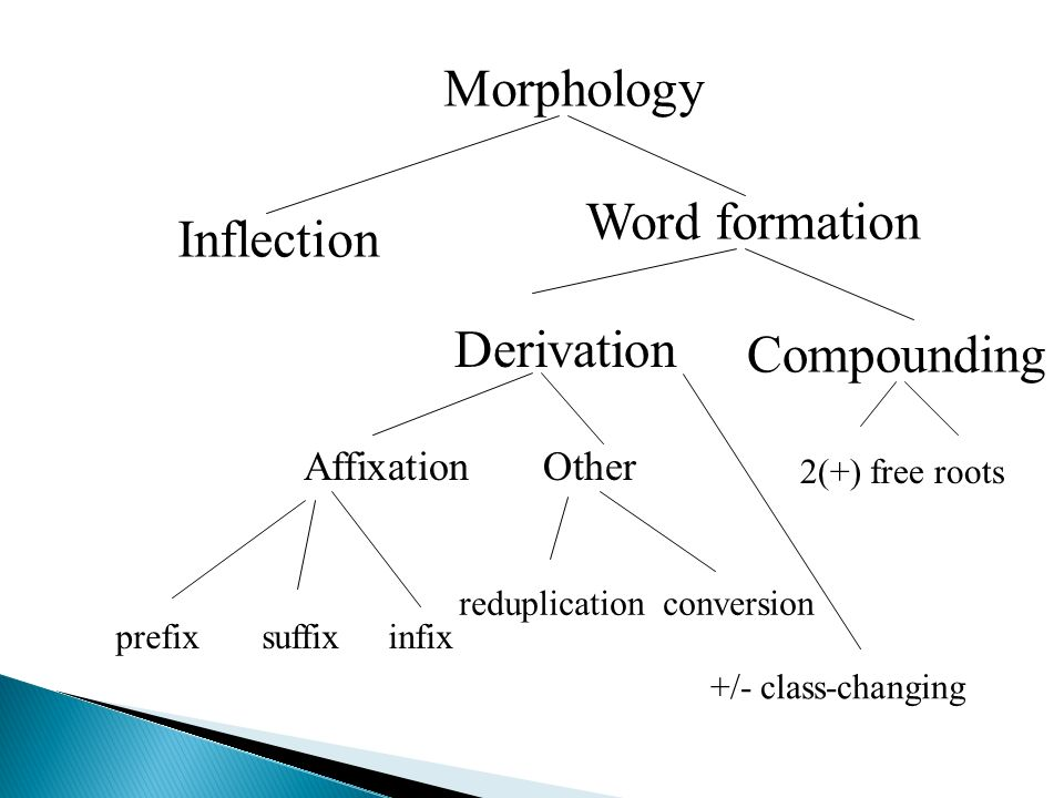 WORDS AND WORDFORMATION PROCESSES Ppt Video Online Download - Word formation