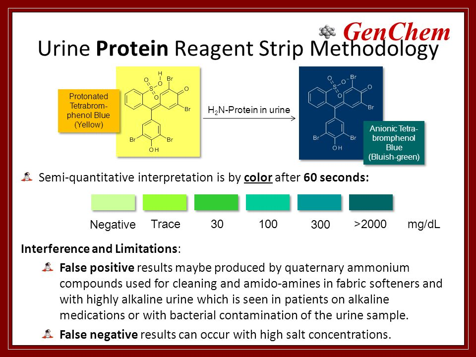 19 Urine Protein Reagent Strip Methodology