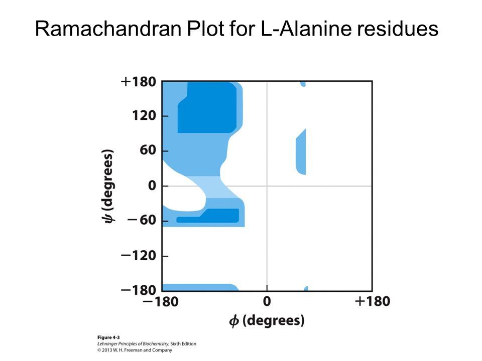 Lehninger Principles Of Biochemistry Ppt Download