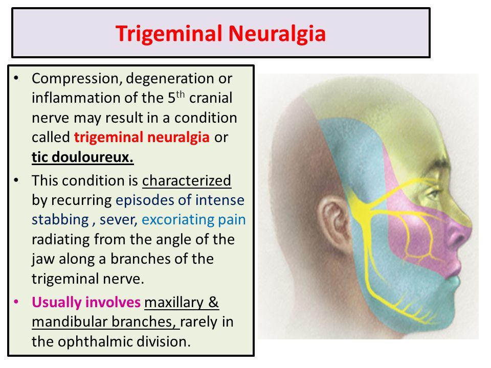 Magnificent Applied Anatomy Of Trigeminal Nerve Festooning - Human ...