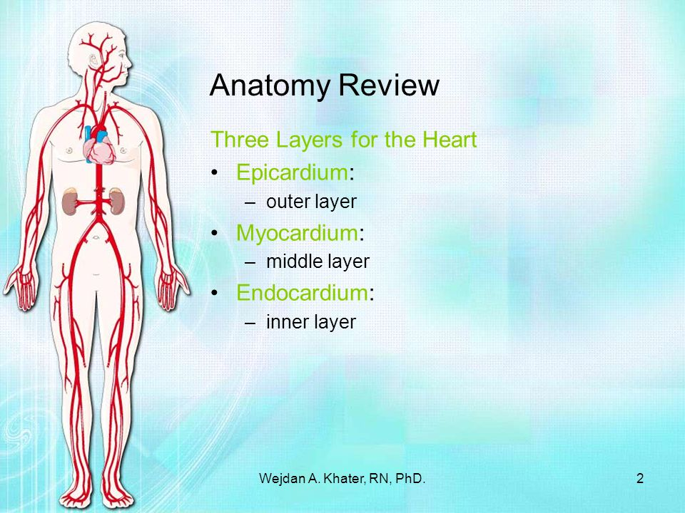 Myocardial Infarction - ppt download