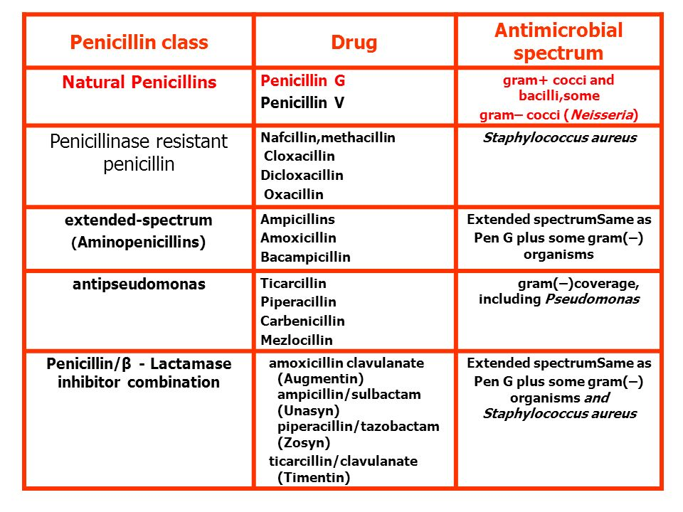 Penicillin Other Drugs In Same Class Magdalene Project Org