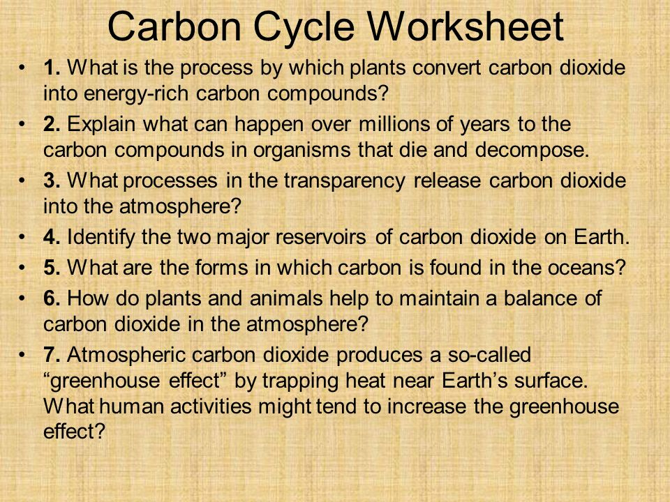 Ecology part 2 general biology ppt video online download 29 carbon cycle worksheet ibookread Download