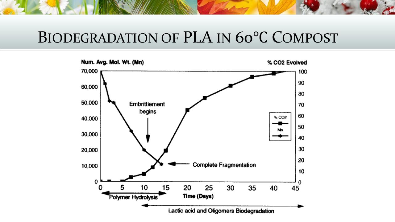 Biodegradation of PLA in 60℃ Compost