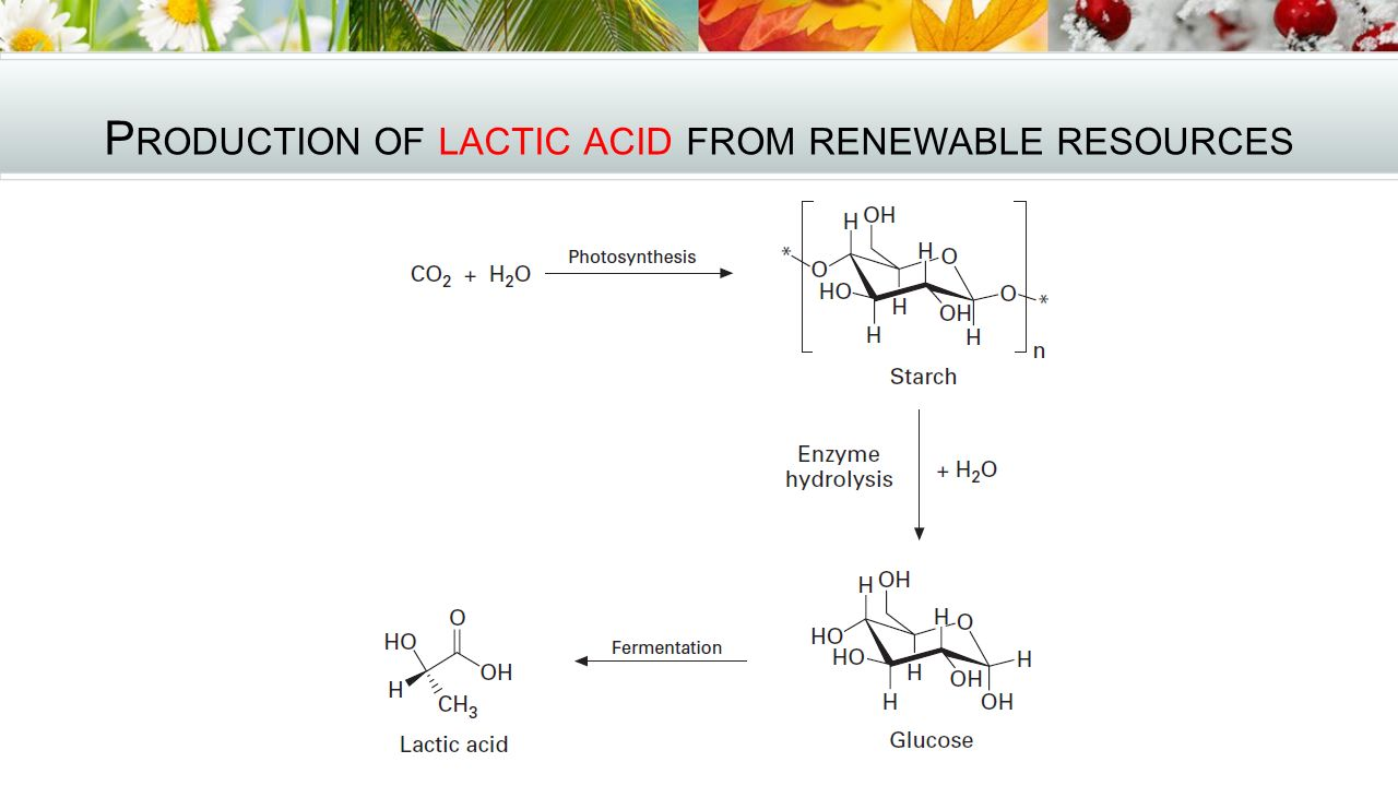 Production of lactic acid from renewable resources