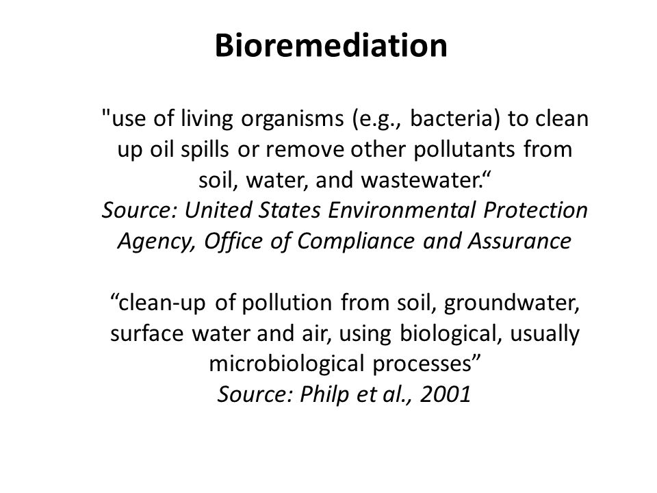 The crucial role of bacterial laccases in the bioremediation of petroleum  hydrocarbons. - World J. Microbiol. Biotechnol. - X-MOL
