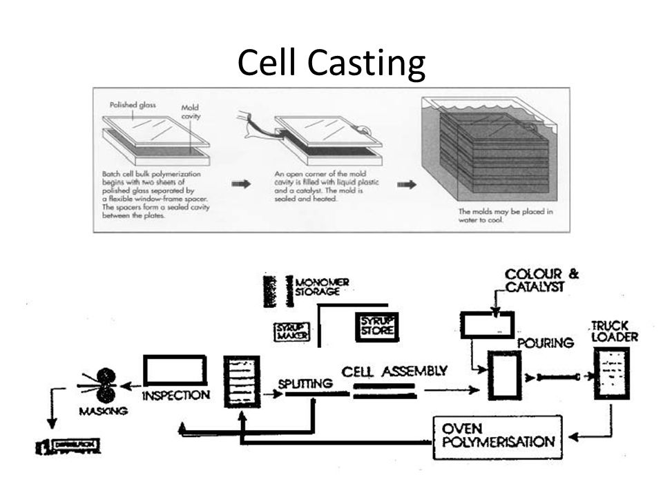 Cell Casting