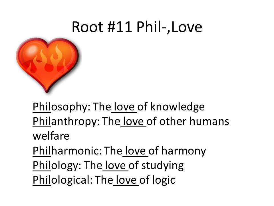 Root  Phil Love Philosophy The Love Of Knowledge