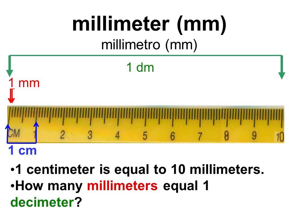 55 Millimeter