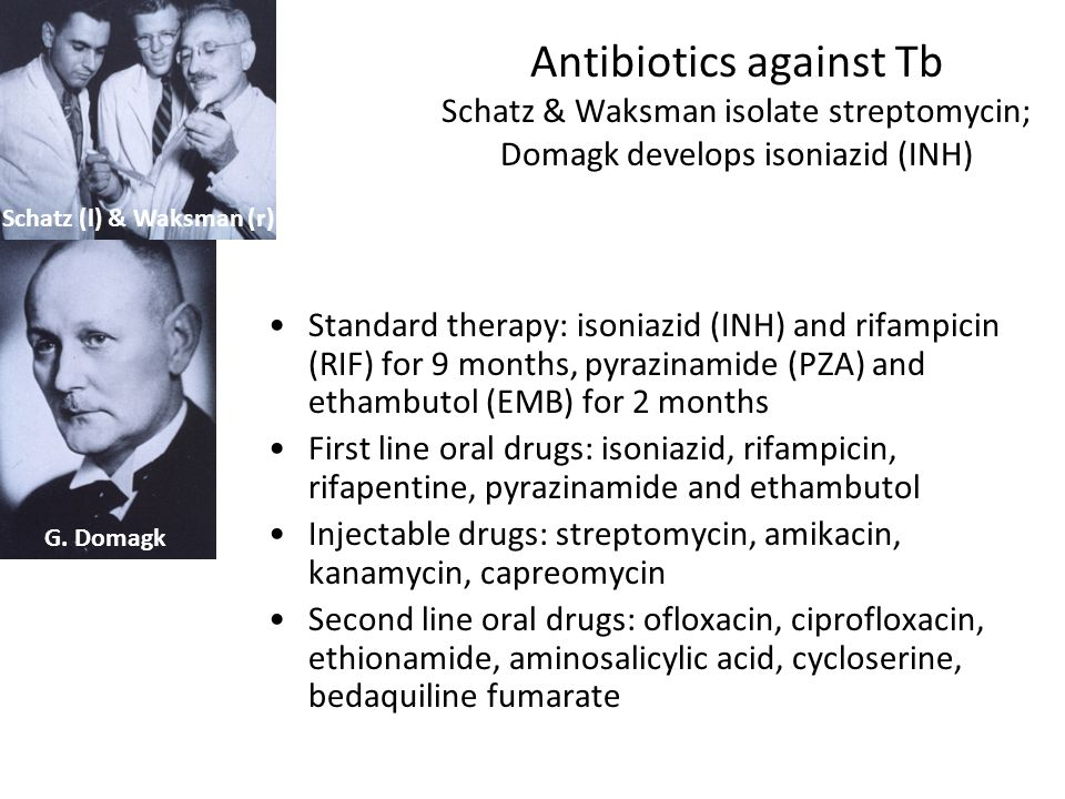 Antibiotics against Tb Schatz & Waksman isolate streptomycin; Domagk develops isoniazid (INH)