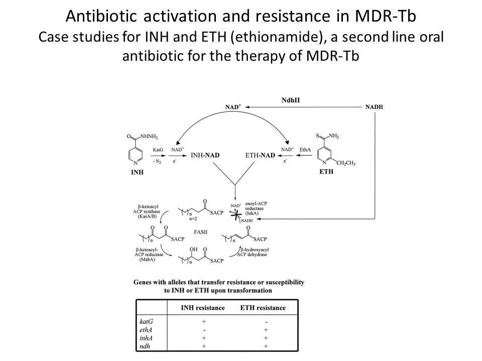 Antibiotic activation and resistance in MDR-Tb