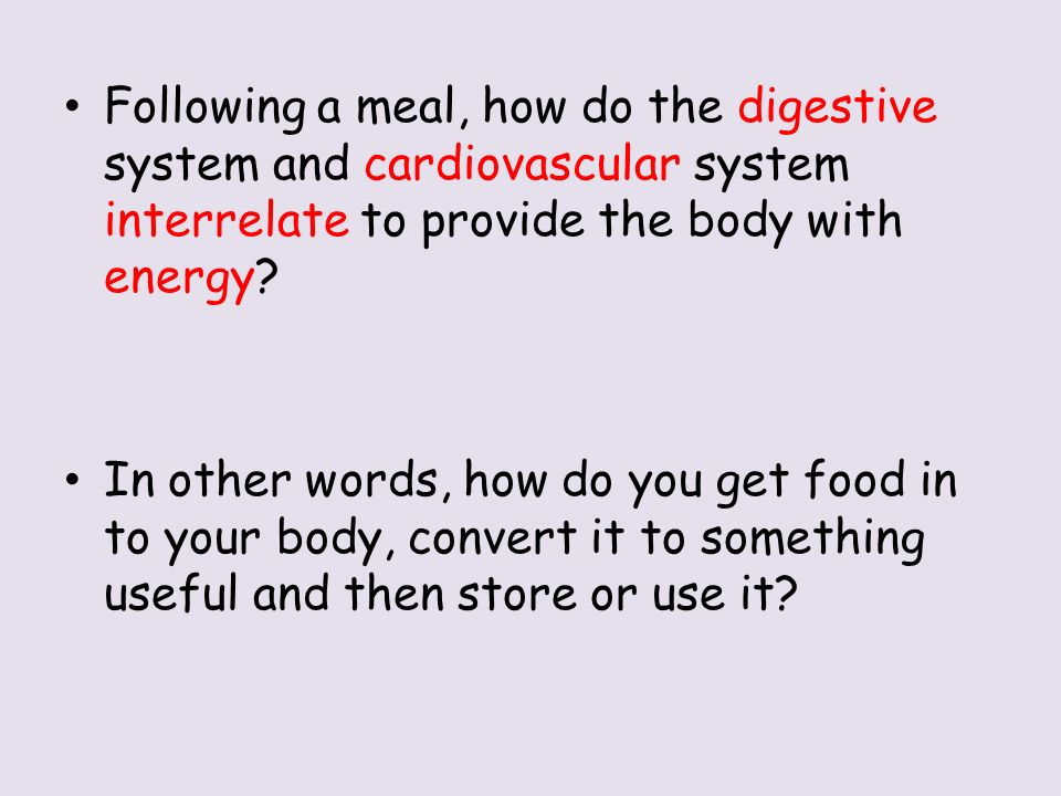 cardiovascular system and energy