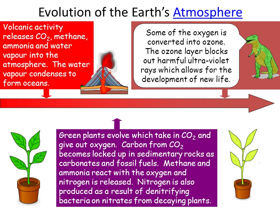 So what's in air? Oxygen  Nitrogen  Carbon dioxide  Water