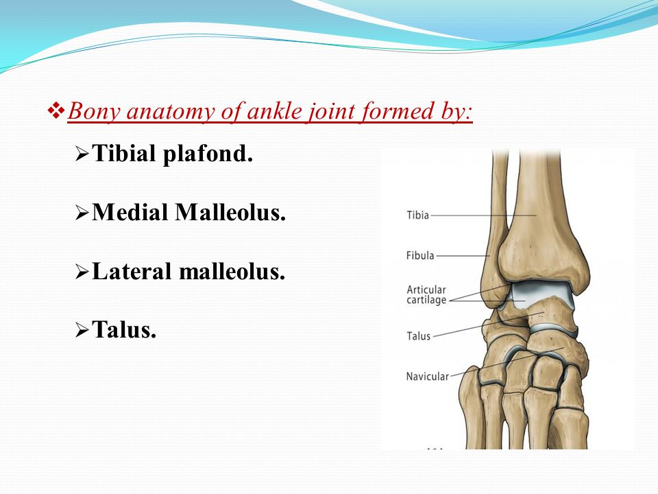 Management of Ankle Impingement by dr - ppt video online download