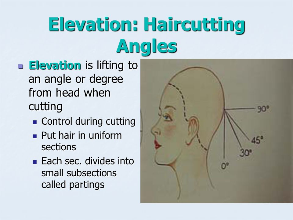 Super Hair Cutting Reference Points Are Used To Establish Design Wiring Digital Resources Jebrpkbiperorg