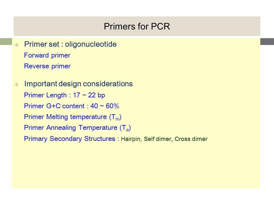 중합효소연쇄반응 (PCR) 핵산 염기서열 분석(DNA SEQUENCING