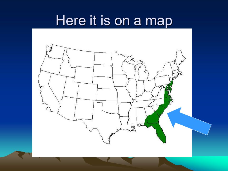 Man In The United States Map.Physical And Man Made Features Of The United States Ppt Video