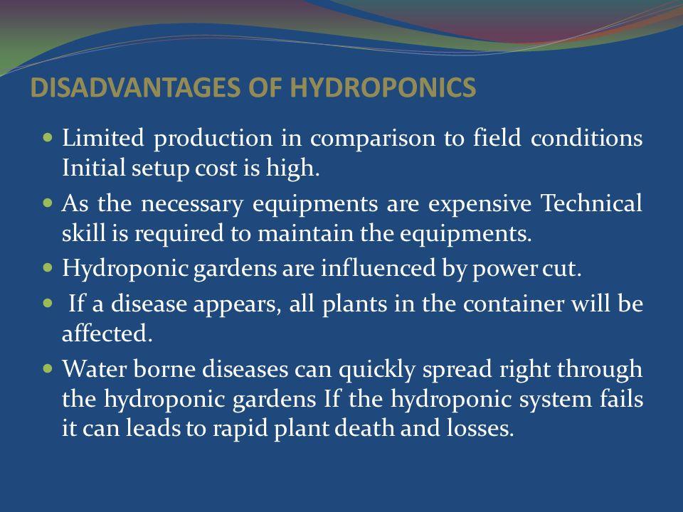 disadvantages of hydroponics