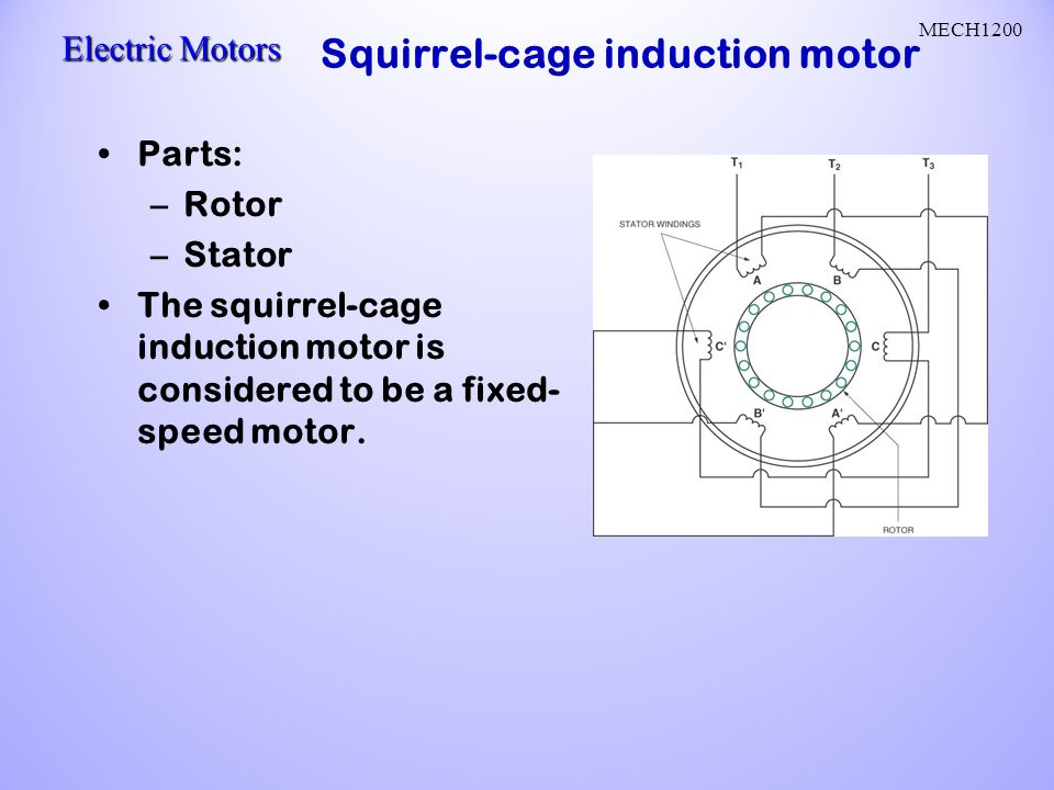 Ac motors ac current reverses direction two parts stator and rotor squirrel cage induction motor ccuart Choice Image