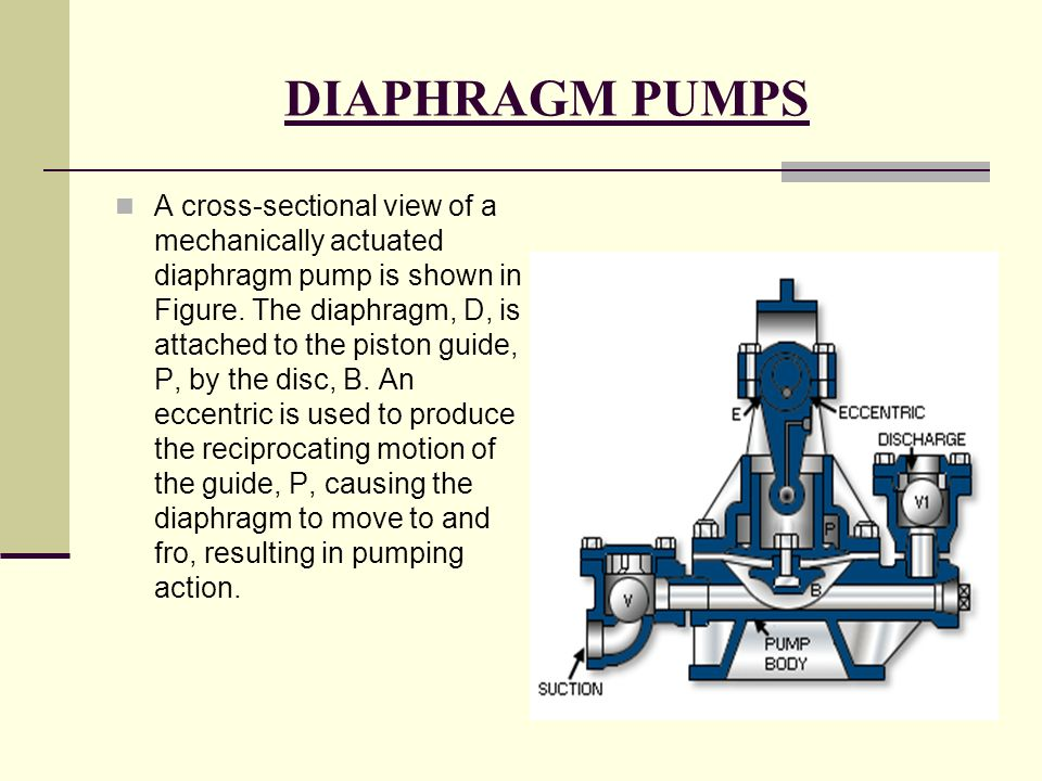 Objective what is pump application of pump classification of pump diaphragm pumps ccuart Image collections