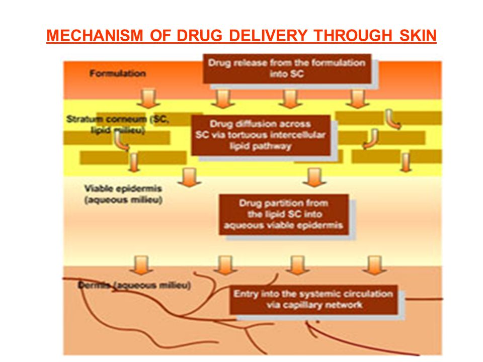 MECHANISM OF DRUG DELIVERY THROUGH SKIN